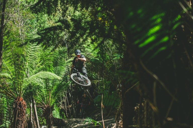 accommodation st helens mountain bike trails - stay at the surfside Beaumaris
